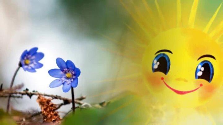 А весной а весной птички запевают вывод из запоя на дому домашний доктор
