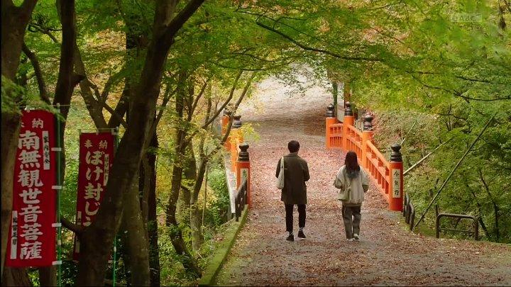 に みやこ が やって来 た 京都